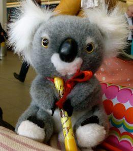 Tutu, koala