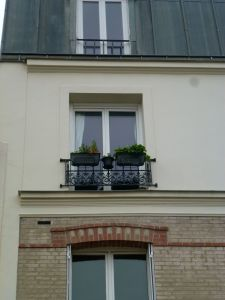 Paris, France, neighborhood, 19th arrondissement, street scene, window, flower box