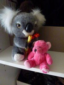 koala, pink bear, teddy bear, Amiens, France