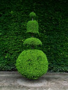 Versailles, Ile-de-France, France, palace, The Palace, gardens, The Grand Trianon, Marie Antoinette's Estate, shrub, tree