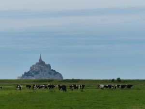 Normandy, France,  pilgrimage, abbey, island