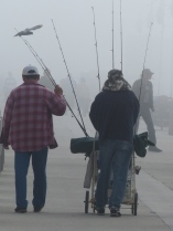 fishermen, pier, Long Beach, Belmont Veterans Memorial Pier